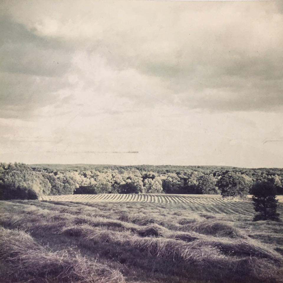 History Hutchins Farm