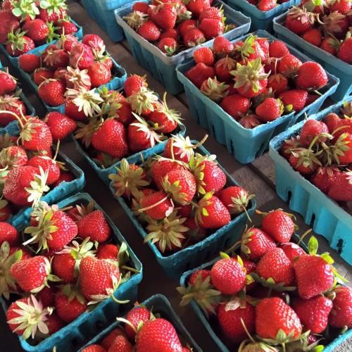 strawberriesjune